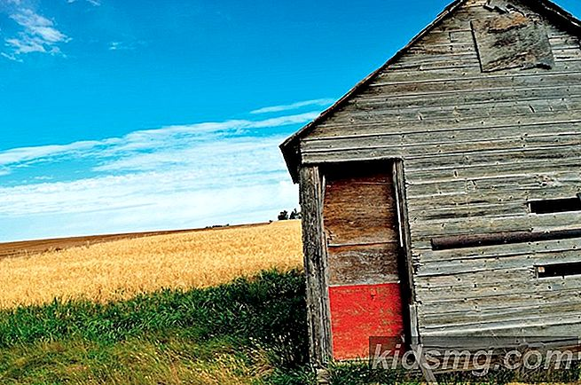 Land Strong: 8 Spectacular Shots of the Prairies